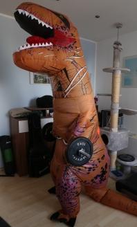 Wer ist ein starker Dino? Ich bin ein starker Dino!