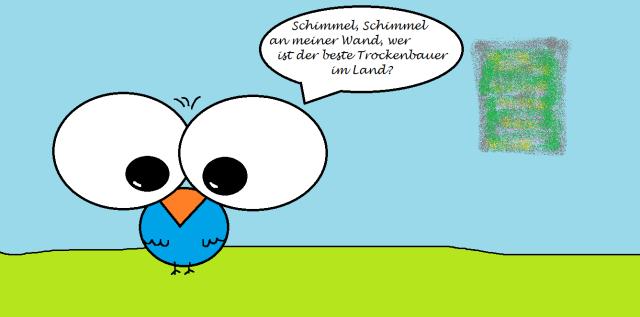 106 Trockenbau vs. Schimmel